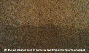 Clean and dirty carpet comparison