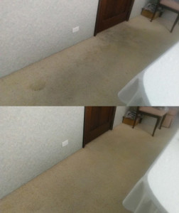 Hallway carpet destroyed by rubber walker tips
