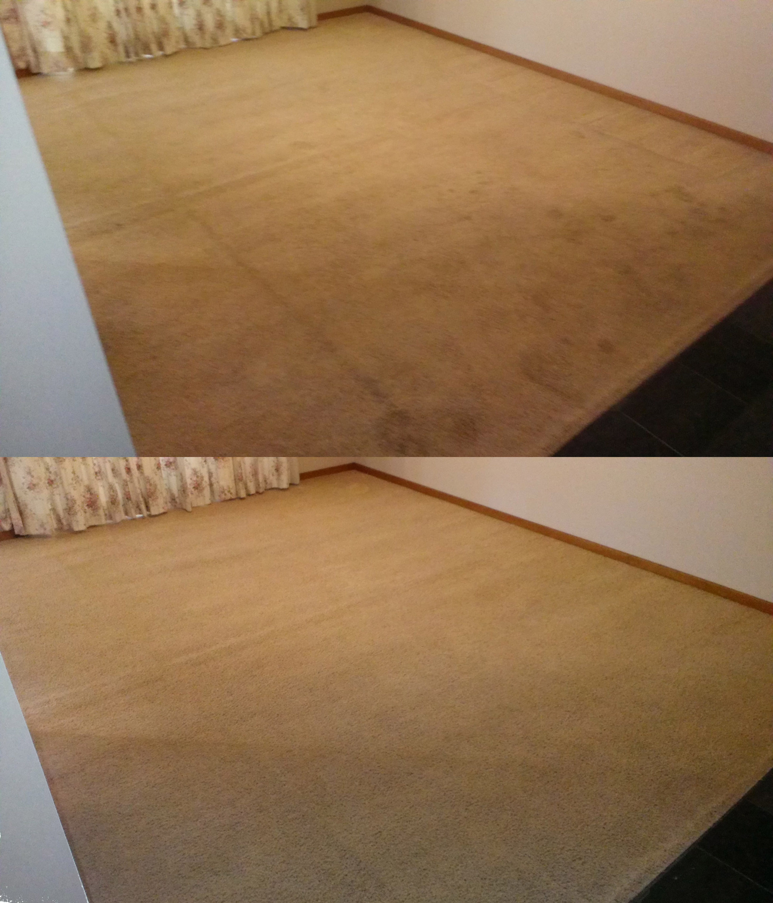 Carpet Cleaning St George Sutherland Shire